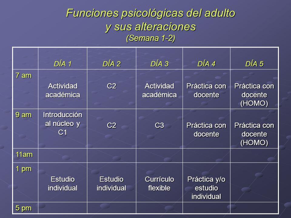 Funciones psicológicas del adulto y sus alteraciones (Semana 1-2)
