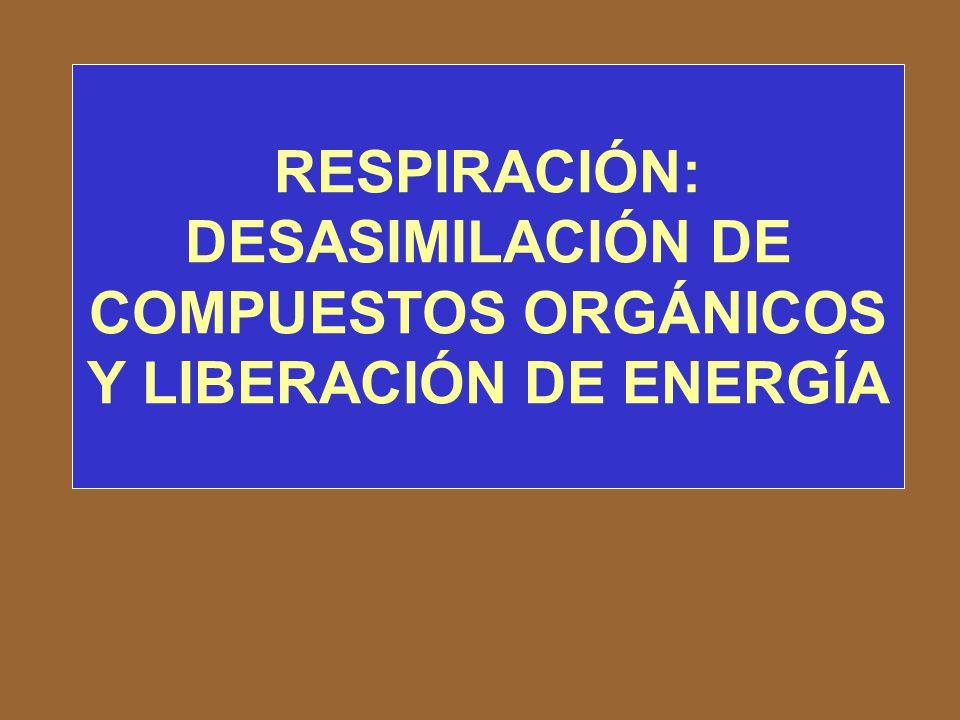 RESPIRACIÓN: DESASIMILACIÓN DE COMPUESTOS ORGÁNICOS Y LIBERACIÓN DE ENERGÍA