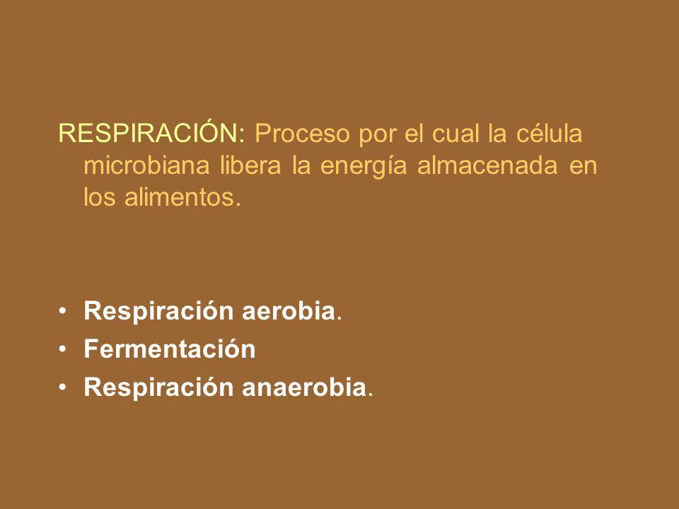RESPIRACIÓN: Proceso por el cual la célula microbiana libera la energía almacenada en los alimentos.