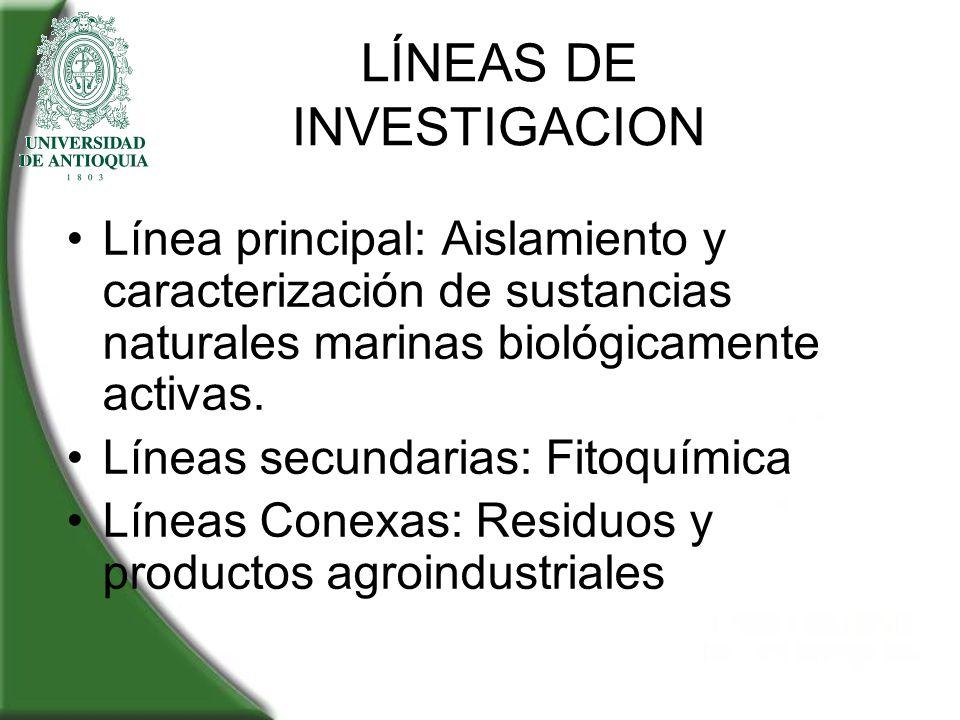 LÍNEAS DE INVESTIGACION