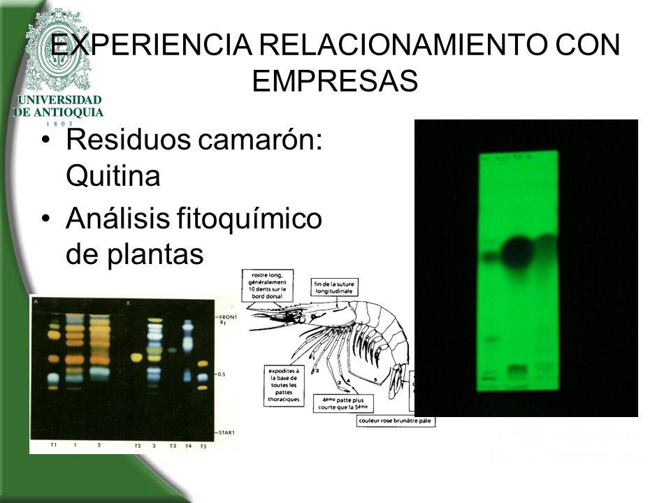 EXPERIENCIA RELACIONAMIENTO CON EMPRESAS