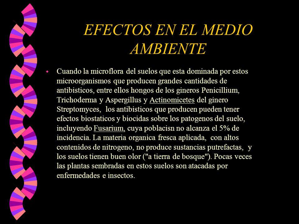 EFECTOS EN EL MEDIO AMBIENTE