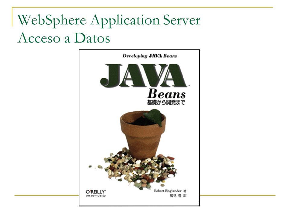 WebSphere Application Server Acceso a Datos