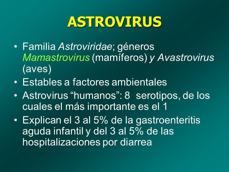 ASTROVIRUS Familia Astroviridae; géneros Mamastrovirus (mamíferos) y Avastrovirus (aves) Estables a factores ambientales.