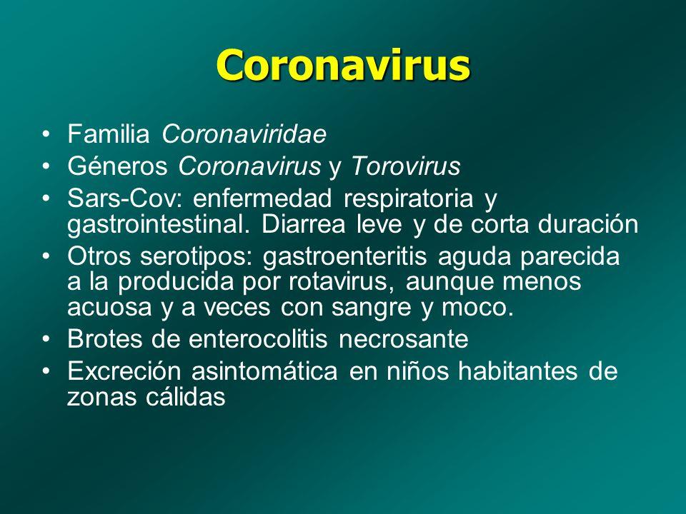 Coronavirus Familia Coronaviridae Géneros Coronavirus y Torovirus