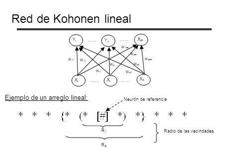 Red de Kohonen lineal Ejemplo de un arreglo lineal: Yi …… YJ …… Xm w1m