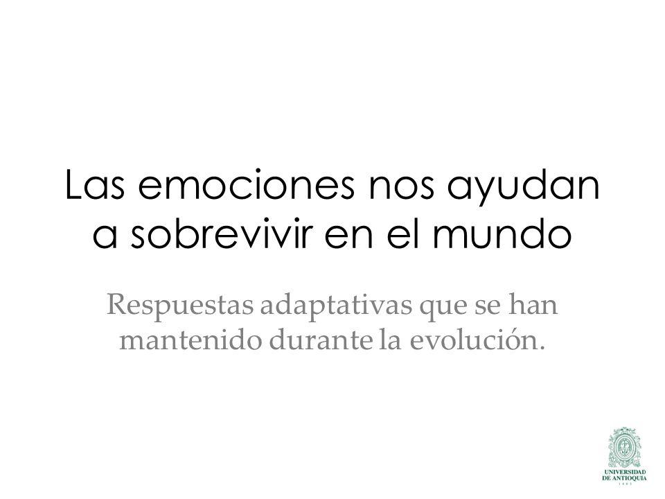 Las emociones nos ayudan a sobrevivir en el mundo