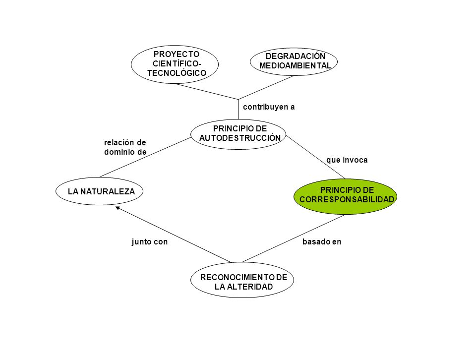 PROYECTO CIENTÍFICO-TECNOLÓGICO DEGRADACIÓN MEDIOAMBIENTAL