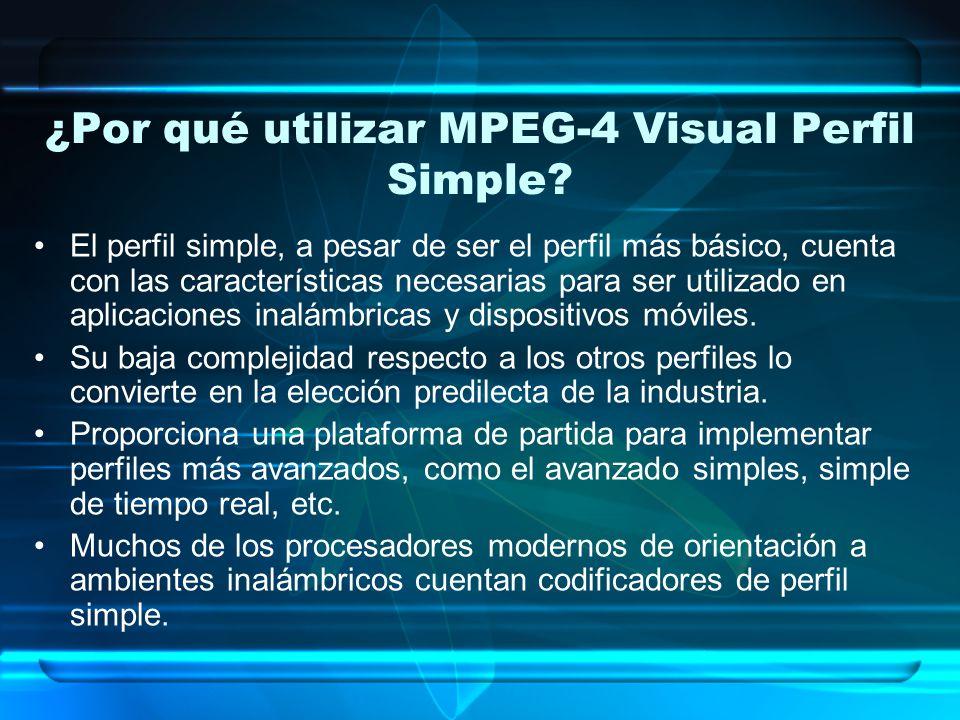 ¿Por qué utilizar MPEG-4 Visual Perfil Simple