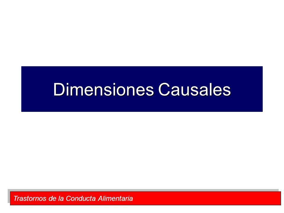 Dimensiones Causales