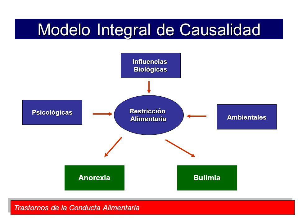 Modelo Integral de Causalidad