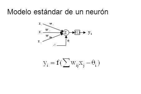 Modelo estándar de un neurón