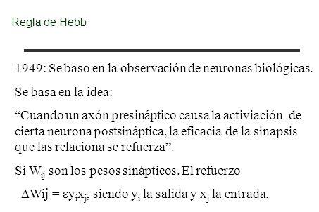 1949: Se baso en la observación de neuronas biológicas.