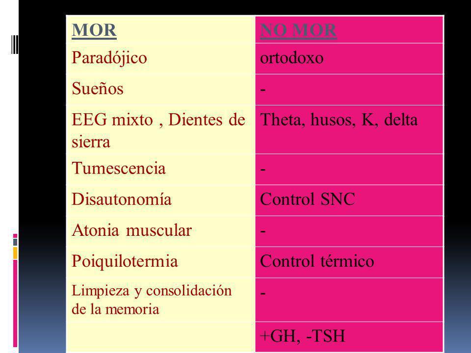 EEG mixto , Dientes de sierra Theta, husos, K, delta Tumescencia