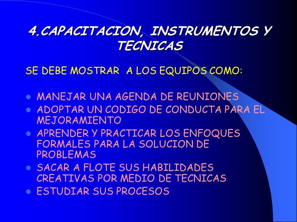 4.CAPACITACION, INSTRUMENTOS Y TECNICAS