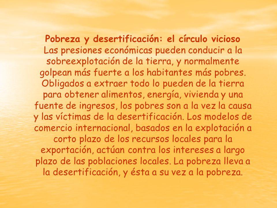 Pobreza y desertificación: el círculo vicioso