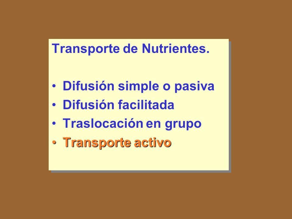 Transporte de Nutrientes. Difusión simple o pasiva Difusión facilitada