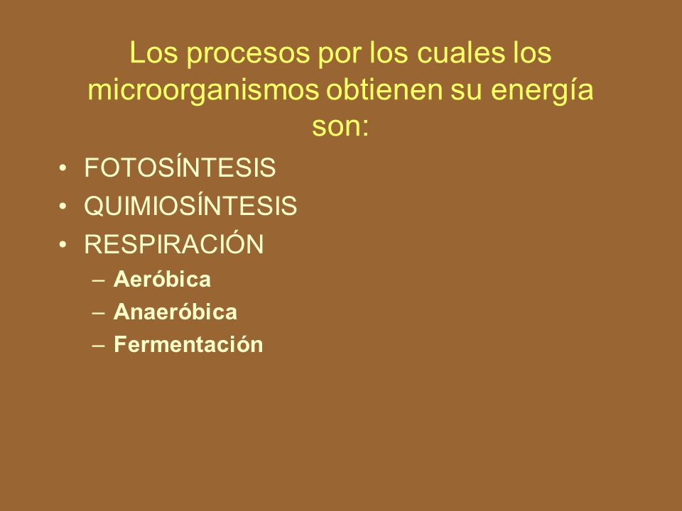 Los procesos por los cuales los microorganismos obtienen su energía son: