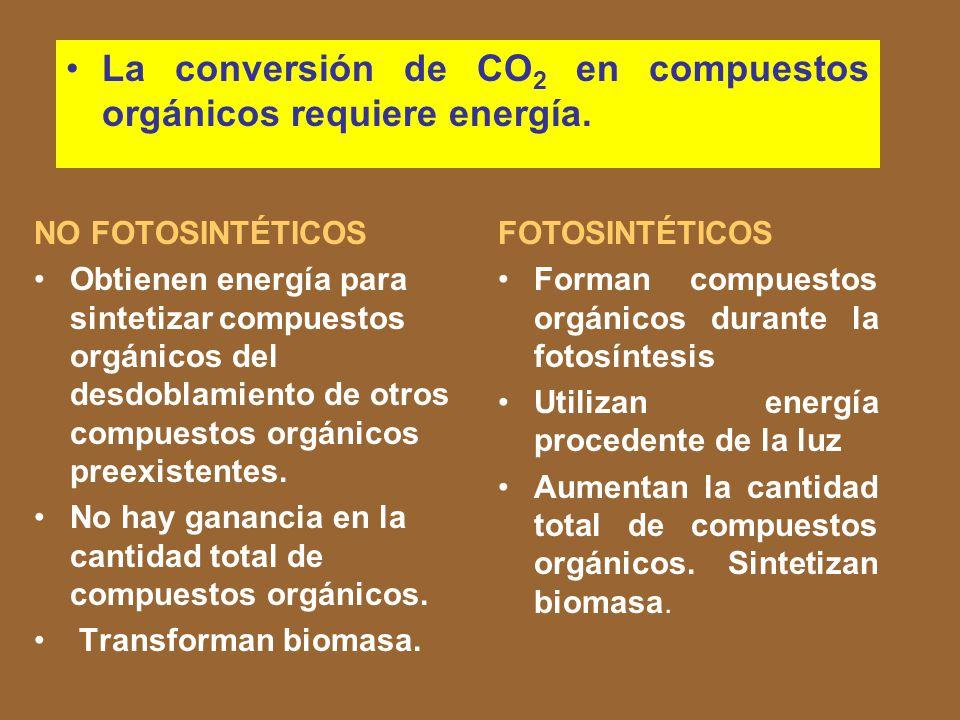 La conversión de CO2 en compuestos orgánicos requiere energía.