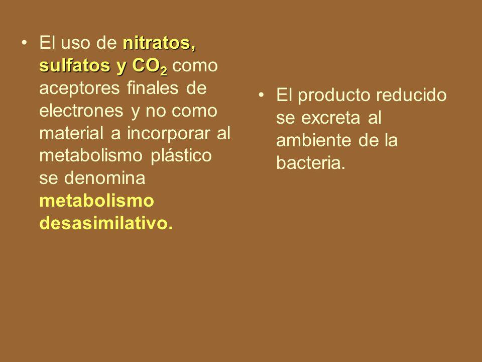 El uso de nitratos, sulfatos y CO2 como aceptores finales de electrones y no como material a incorporar al metabolismo plástico se denomina metabolismo desasimilativo.