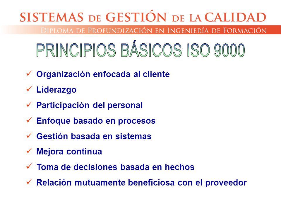 PRINCIPIOS BÁSICOS ISO 9000