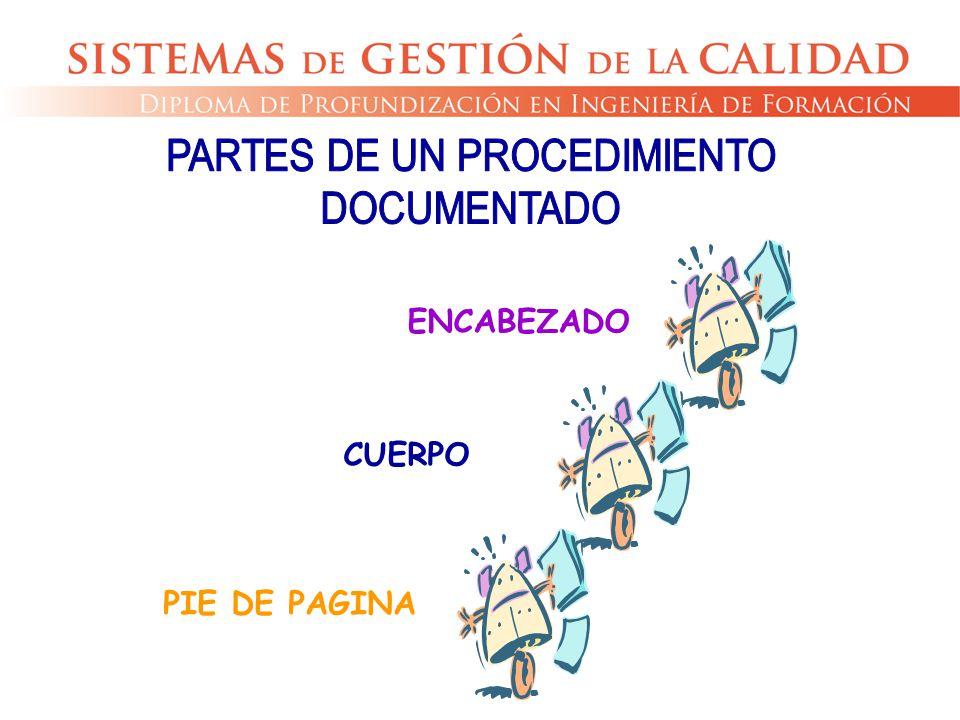 PARTES DE UN PROCEDIMIENTO
