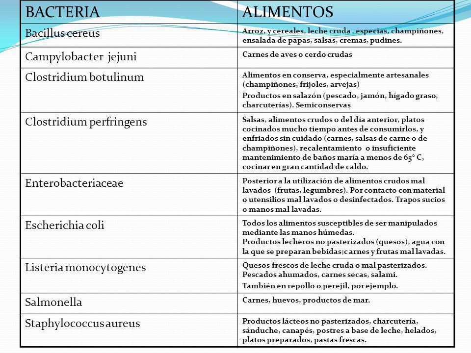 BACTERIA ALIMENTOS Bacillus cereus Campylobacter jejuni