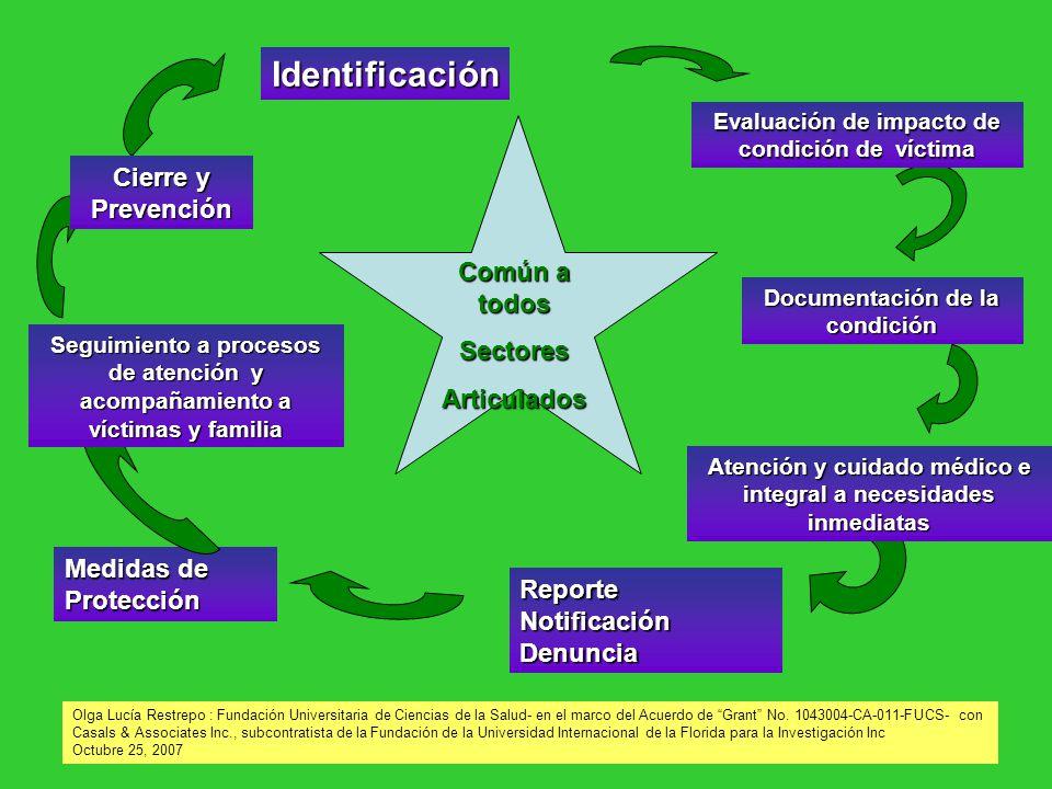 Identificación Cierre y Prevención Común a todos Sectores Articulados
