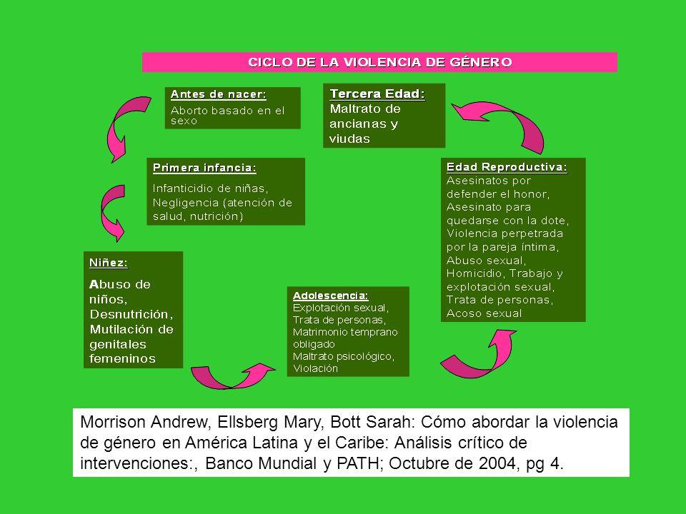 Morrison Andrew, Ellsberg Mary, Bott Sarah: Cómo abordar la violencia de género en América Latina y el Caribe: Análisis crítico de intervenciones:, Banco Mundial y PATH; Octubre de 2004, pg 4.