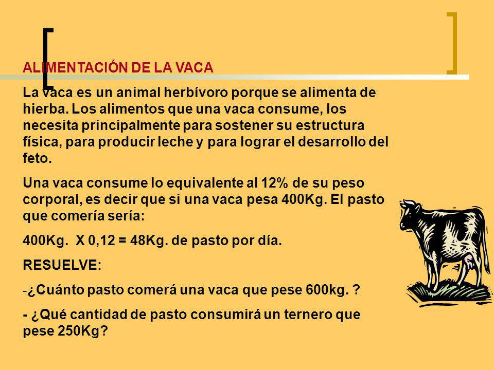 ALIMENTACIÓN DE LA VACA
