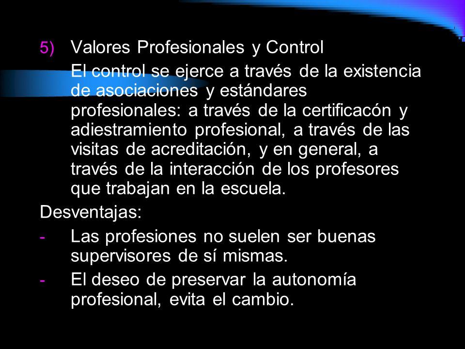 Valores Profesionales y Control