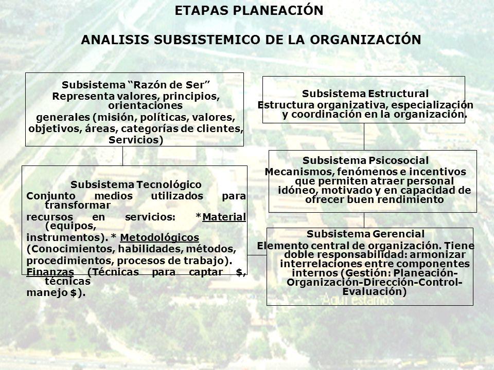 ETAPAS PLANEACIÓN ANALISIS SUBSISTEMICO DE LA ORGANIZACIÓN