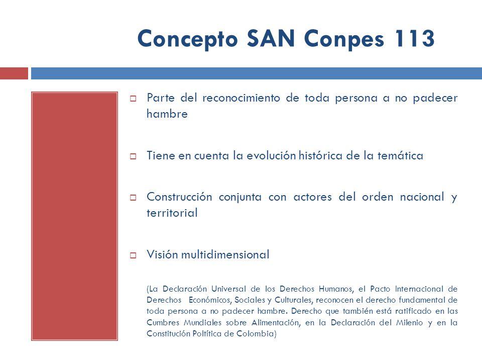 Concepto SAN Conpes 113 Parte del reconocimiento de toda persona a no padecer hambre. Tiene en cuenta la evolución histórica de la temática.