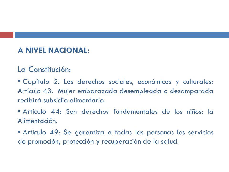La Constitución: A NIVEL NACIONAL: