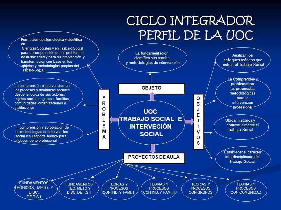 CICLO INTEGRADOR PERFIL DE LA UOC