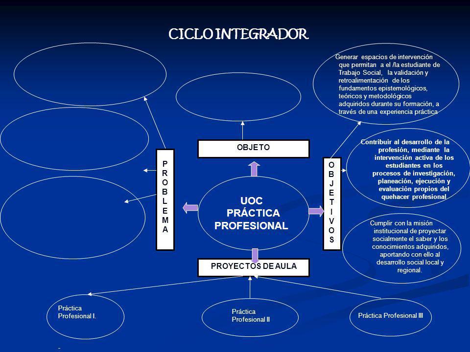 CICLO INTEGRADOR UOC PRÁCTICA PROFESIONAL OBJETO PROBLEMA OBJET I VOS