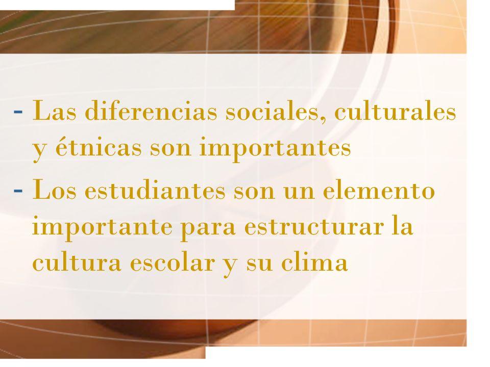 Las diferencias sociales, culturales y étnicas son importantes