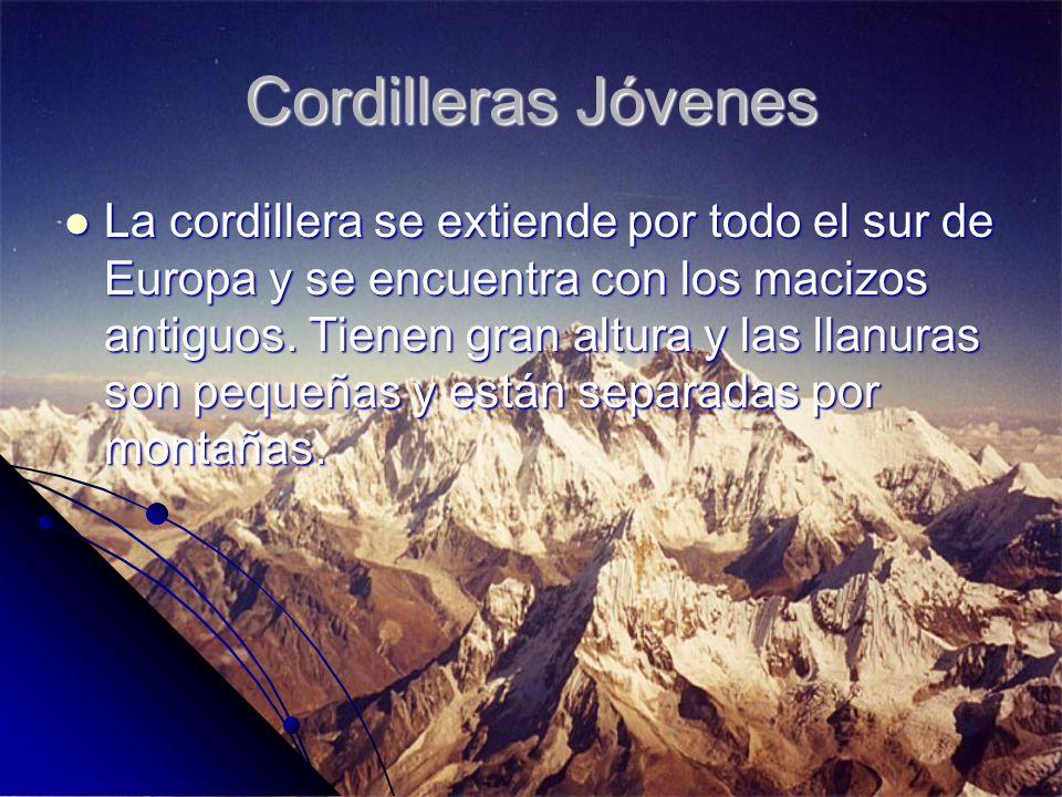 Cordilleras Jóvenes