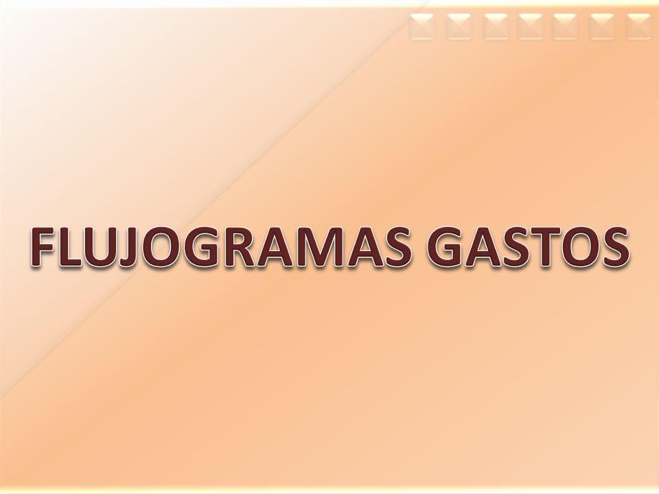 FLUJOGRAMAS GASTOS