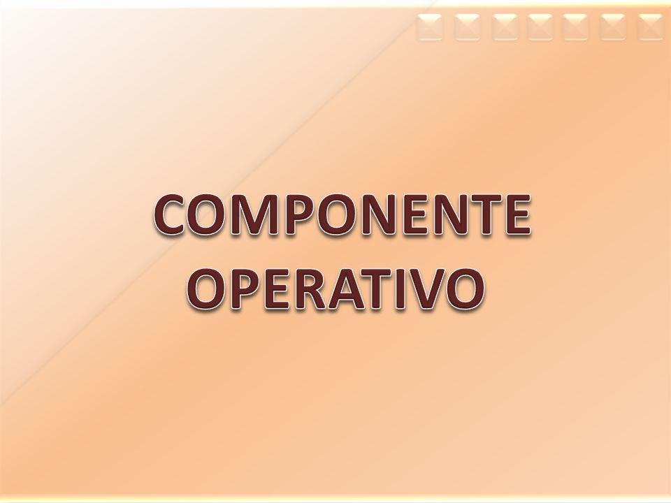 COMPONENTE OPERATIVO