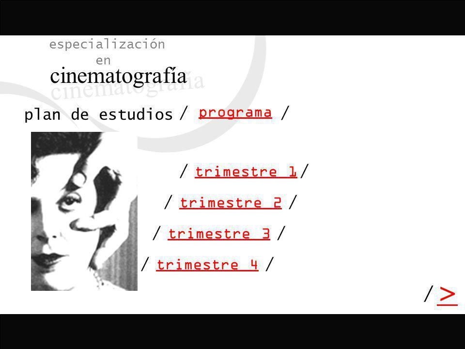 cinematografía > / especialización en plan de estudios / programa /
