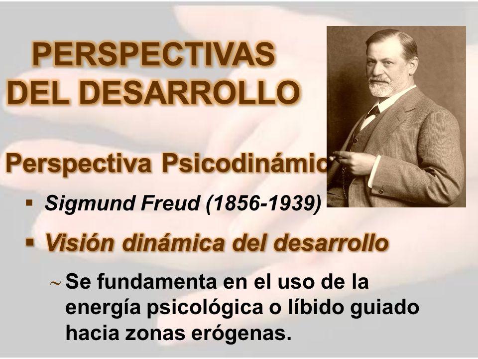 PERSPECTIVAS DEL DESARROLLO