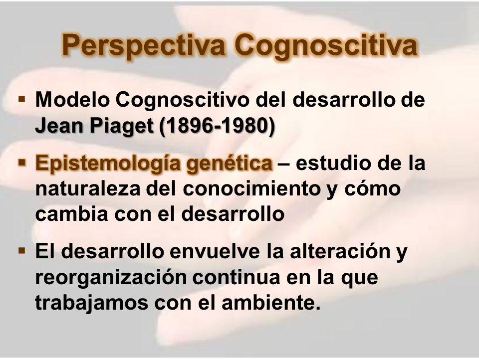 Perspectiva Cognoscitiva