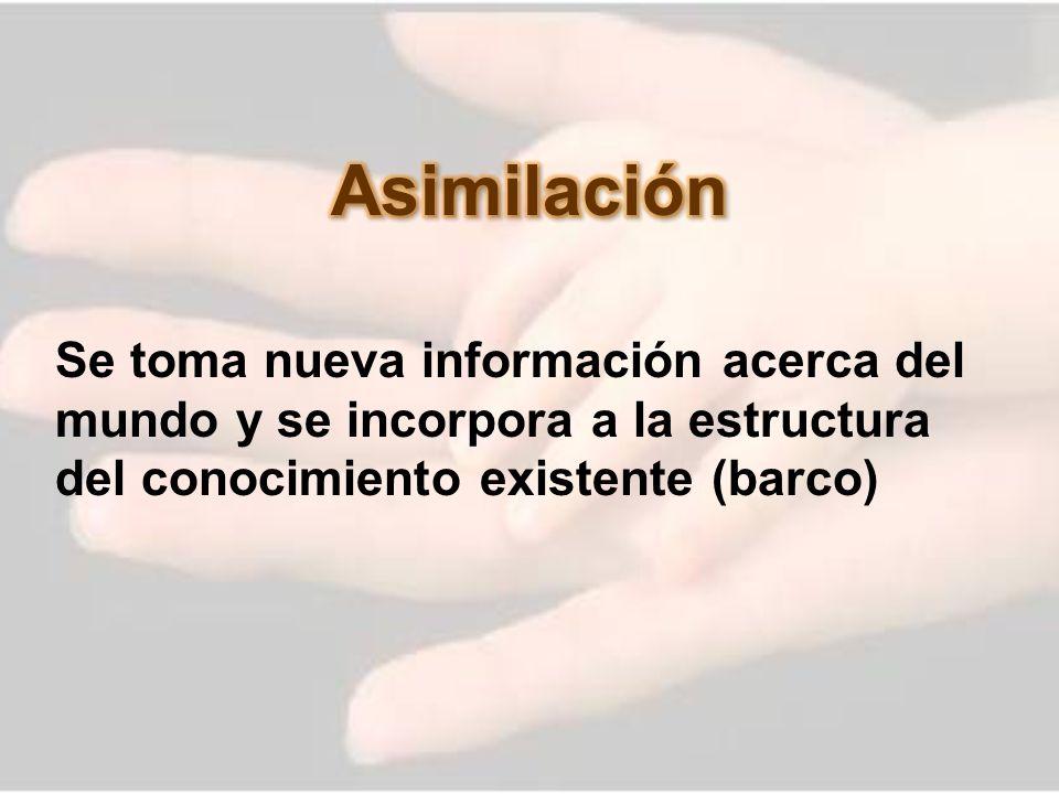 Asimilación Se toma nueva información acerca del mundo y se incorpora a la estructura del conocimiento existente (barco)