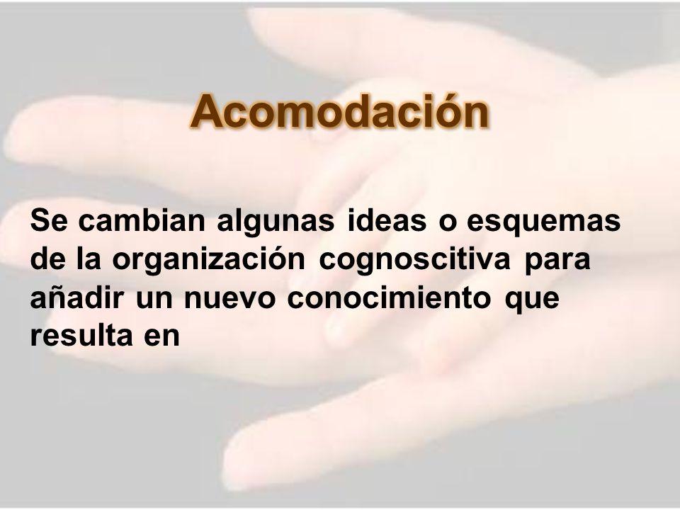 Acomodación Se cambian algunas ideas o esquemas de la organización cognoscitiva para añadir un nuevo conocimiento que resulta en.