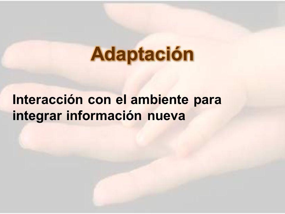 Adaptación Interacción con el ambiente para integrar información nueva