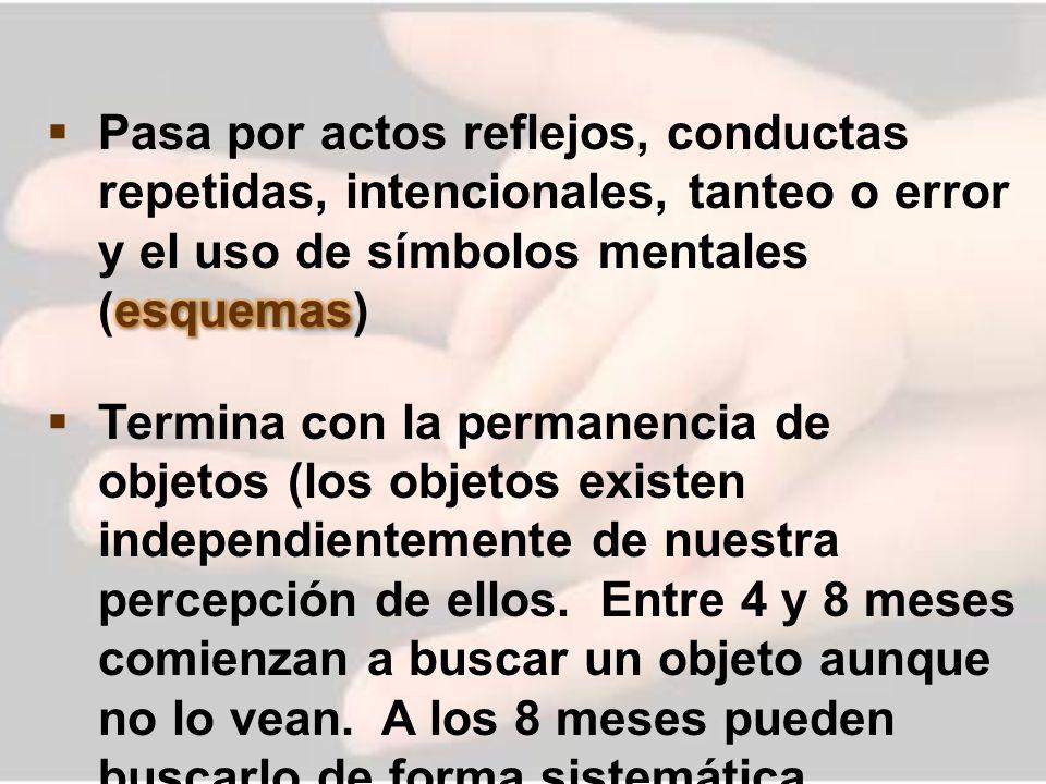 Pasa por actos reflejos, conductas repetidas, intencionales, tanteo o error y el uso de símbolos mentales (esquemas)