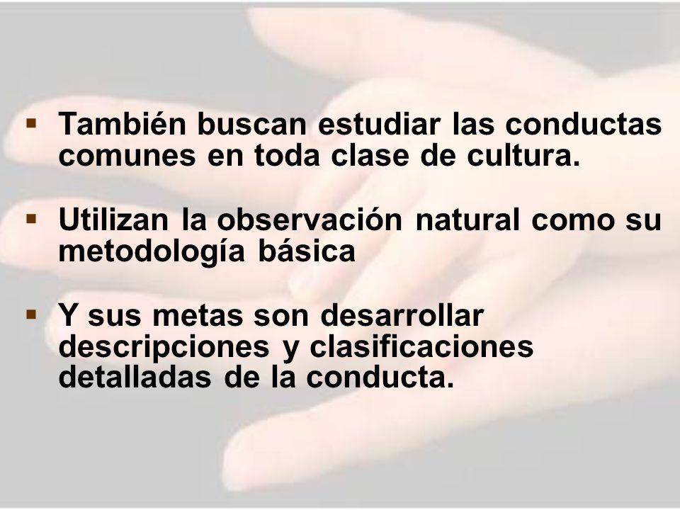 También buscan estudiar las conductas comunes en toda clase de cultura.