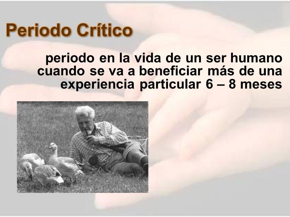 Periodo Crítico periodo en la vida de un ser humano cuando se va a beneficiar más de una experiencia particular 6 – 8 meses.
