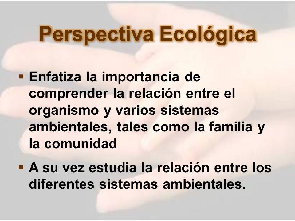 Perspectiva Ecológica